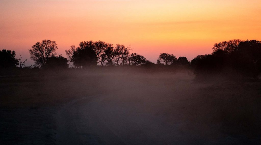 Sunset in Botswana, Africa. Cheetah, cubs & the most incredible dinner setting
