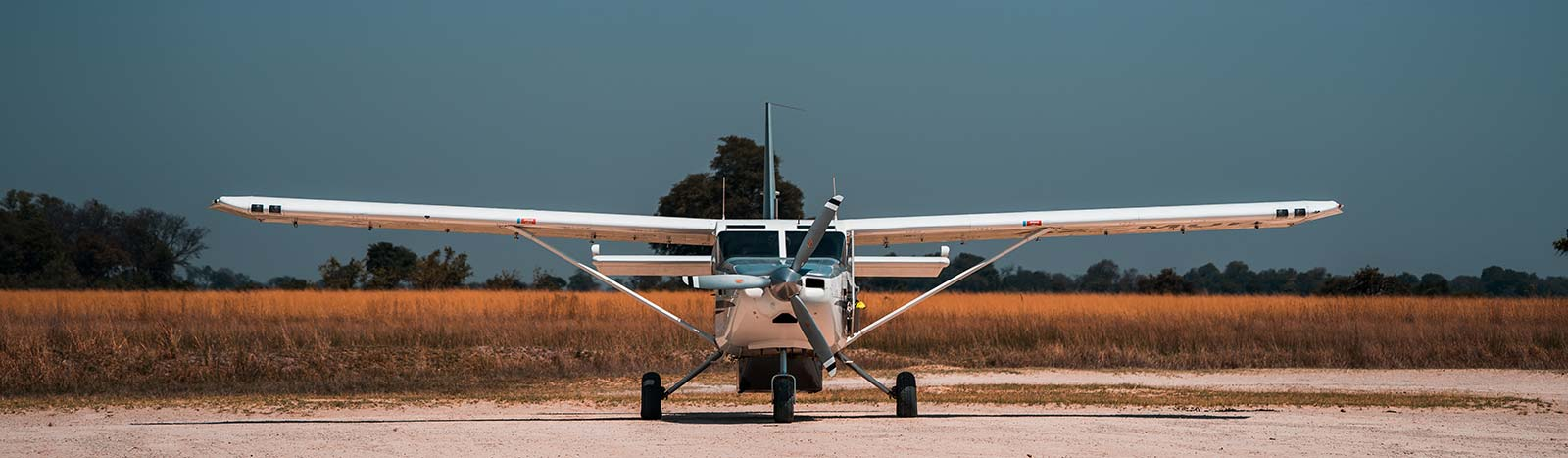 Small plane in Botswana, Africa. Cheetah, cubs & the most incredible dinner setting