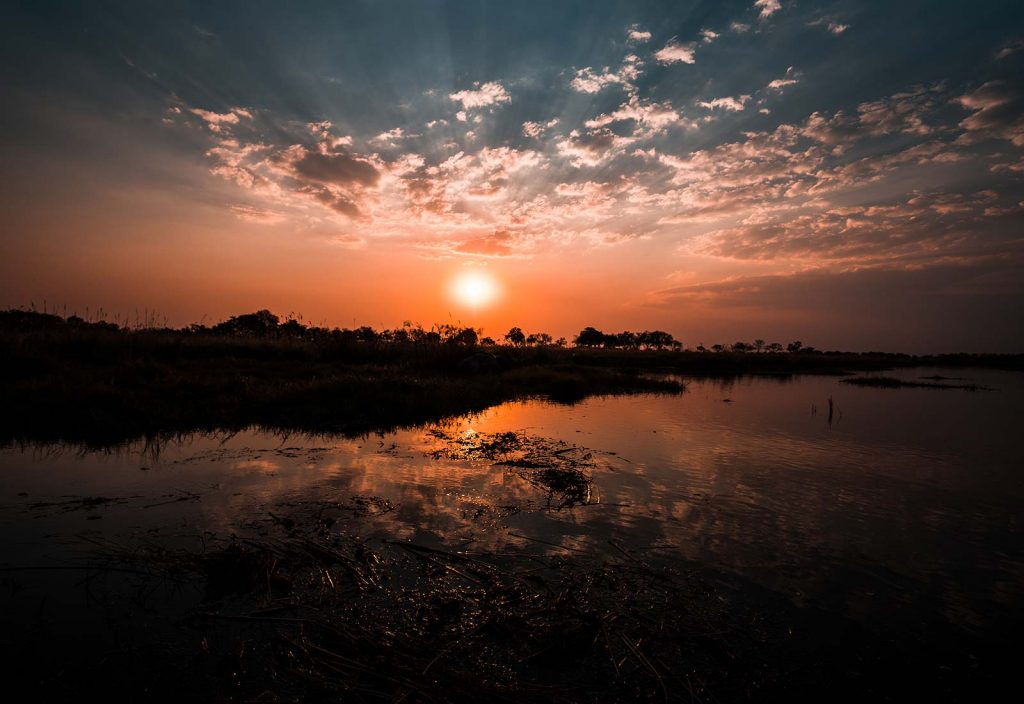 Sunset at Okavango Delta in Botswana, Africa. An owl and African sunsets