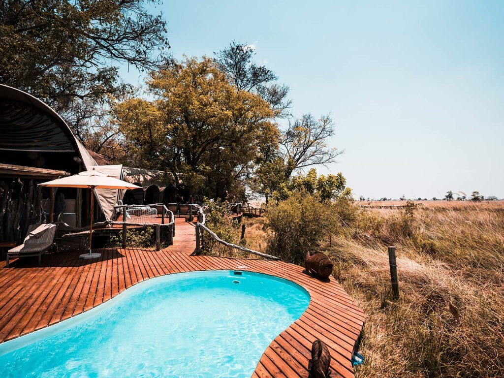 Swimming pool at the lodge in Botswana, Africa. An owl and African sunsets