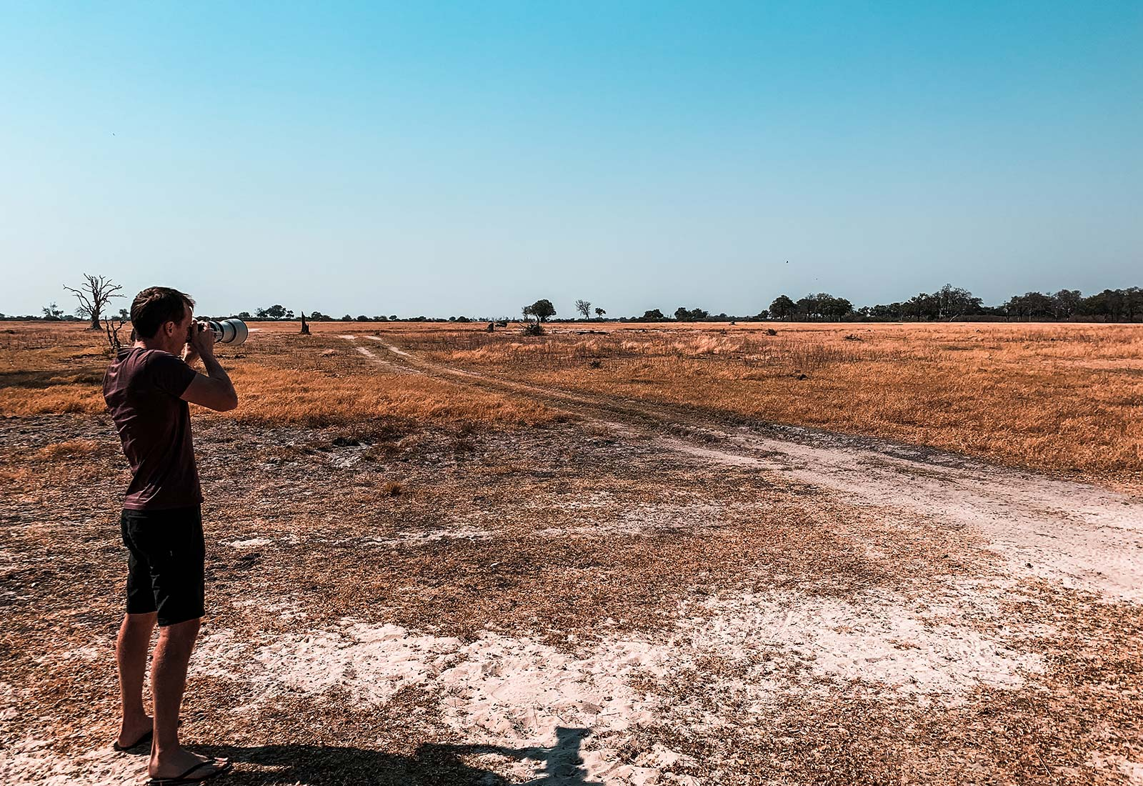 David Simpson taking photos of the plains in Botswana, Africa. An owl and African sunsets