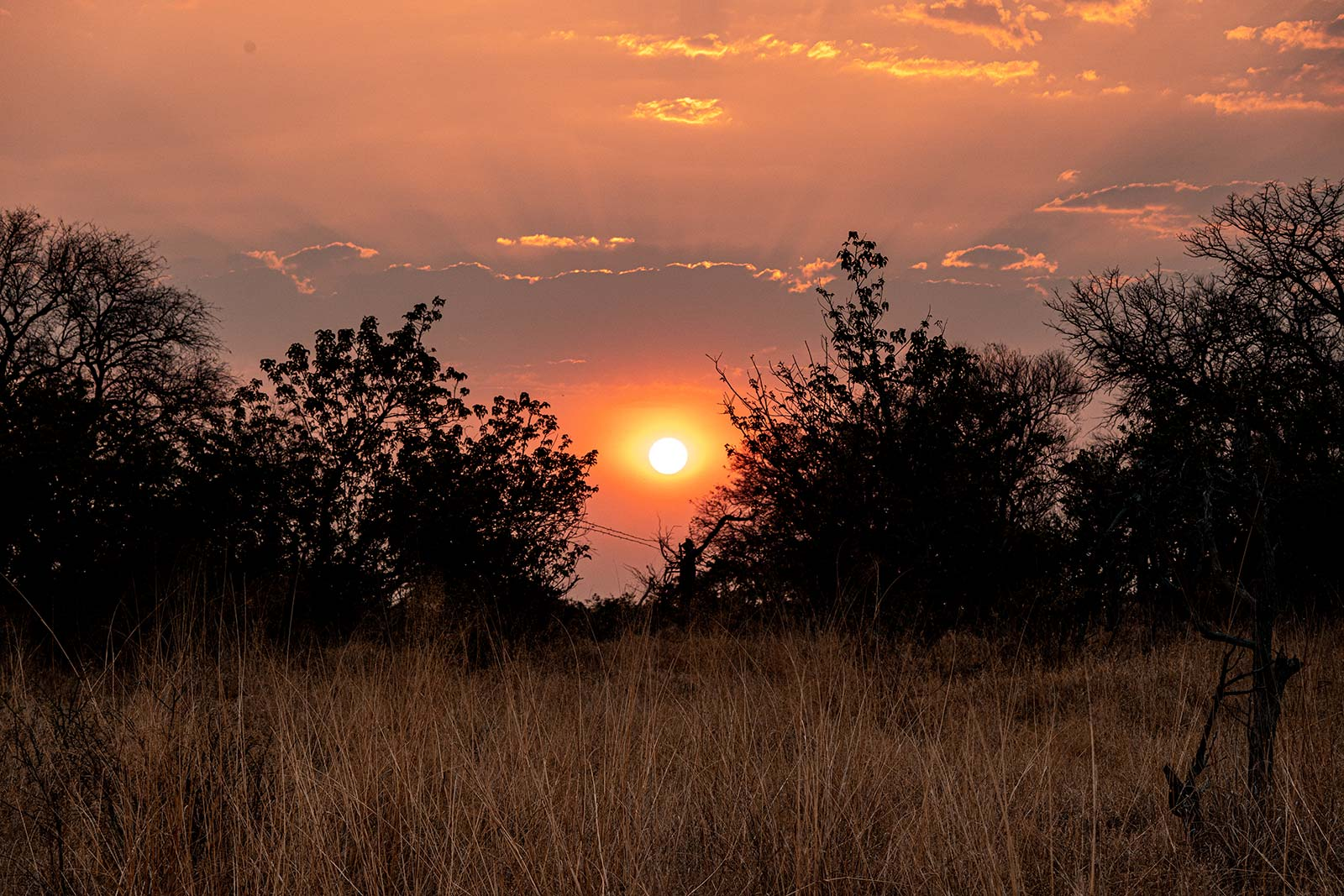 Sunset in Botswana, Africa. Getting chased by a herd of elephants